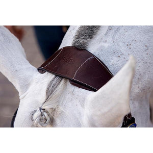 PS of Sweden HvE Bridle