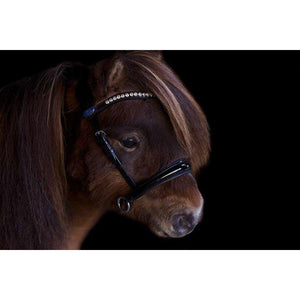 PS Of Sweden Mini Bridle Petite Glorious
