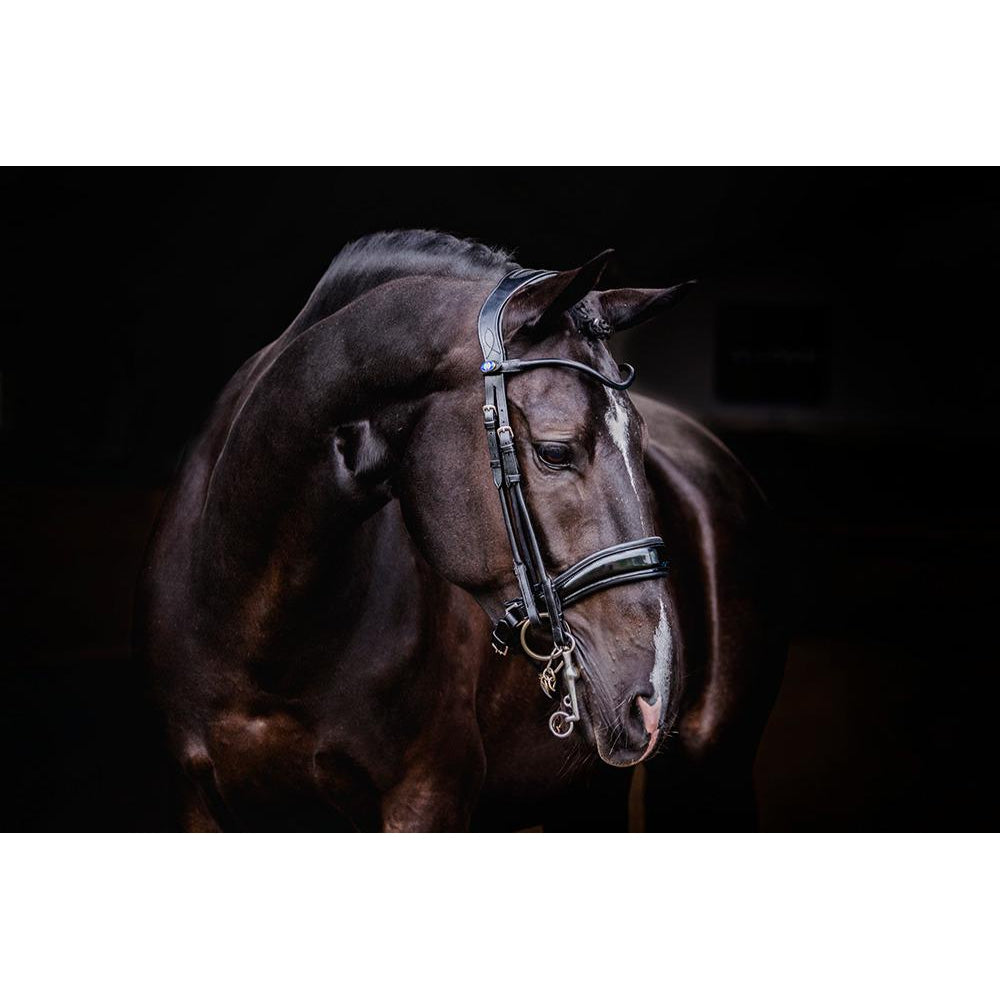 PS of Sweden Passage Bridle w/ Patent Noseband