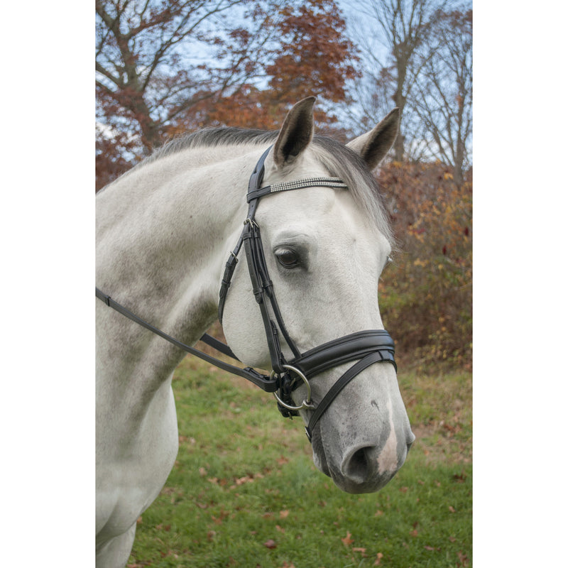 Red Barn Bridle Passage Dressage - Lg/Oversize