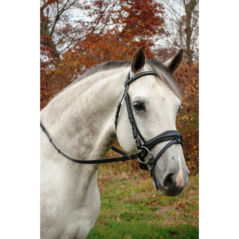 Red Barn Dressage Piaffe Bridle with Flash Crank