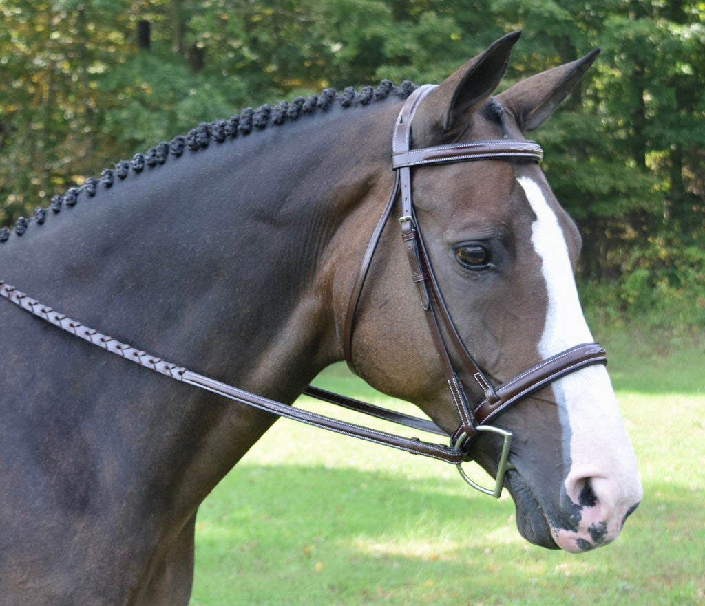 Red Barn Bridle Spirit - Cob