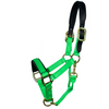 Intrepid Breakaway Nylon Halter
