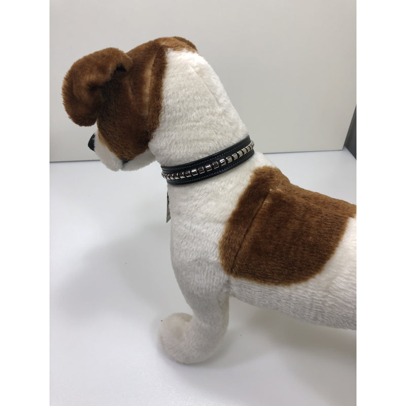 "Tory 3/4"" Clincher Dog Collar"