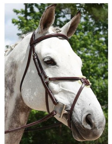 Red Barn Bridle Equinox Fig 8 LG/Oversize