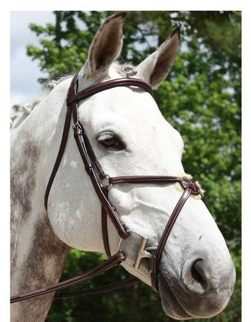Red Barn Bridle Equinox Fig 8 COB