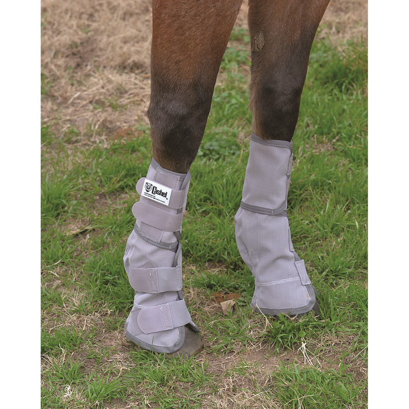Crusader Leg Guard 3 small horse size