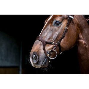 PS Of Sweden Nirak Combination Bridle