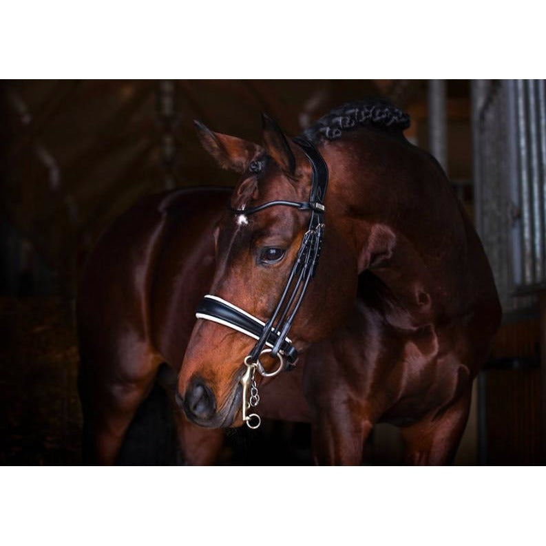 PS of Sweden Grand Prix Bridle