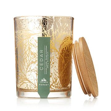 Thymes Forest Cedar Poured Candle