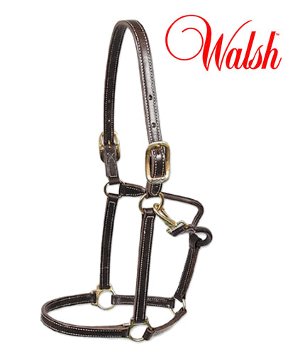 Walsh 3/4 inch Showman Leather Halter Cob
