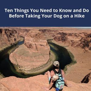 10 Things You Need to Know & Do Before Taking Your Dog On a Hike