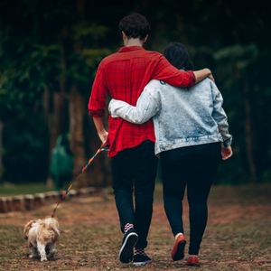 6 Dog Walking Tips Everyone Should Know