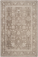Safavieh PATINA PTN326 Area Rug