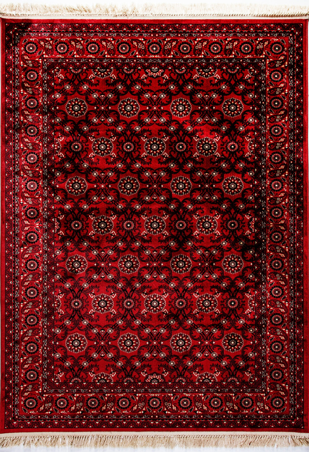 Dynamic Rugs Crown 16231 Area Rug