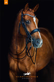 Venice Anatomical Rolled Double Bridle