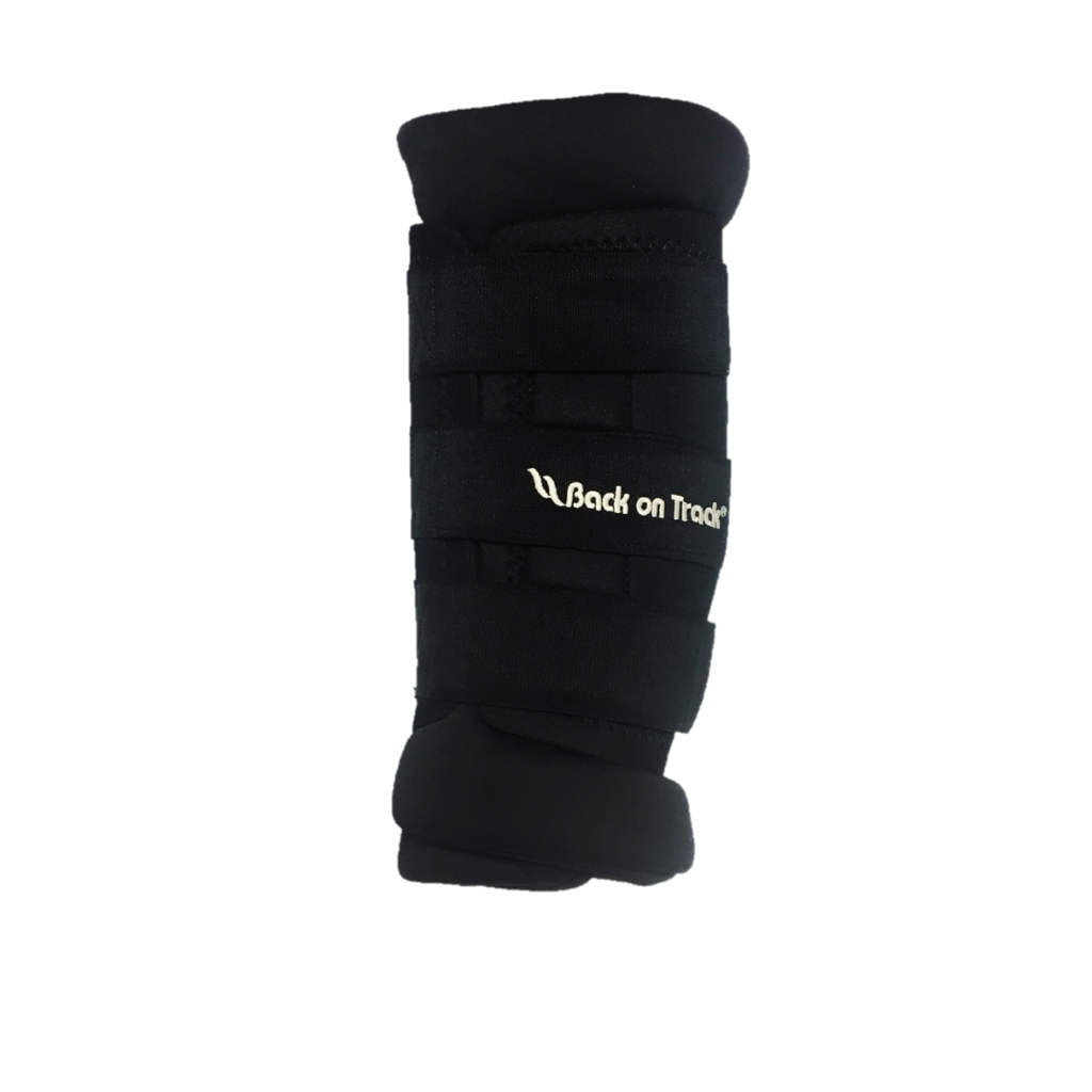 Therapeutic Padded Royal Hock Boots