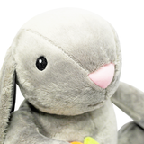 Rabbit with Floppy Ears and Carrot Plush