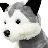 Husky Dog Plush