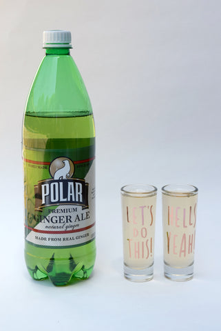 Party On Shot Glass Set