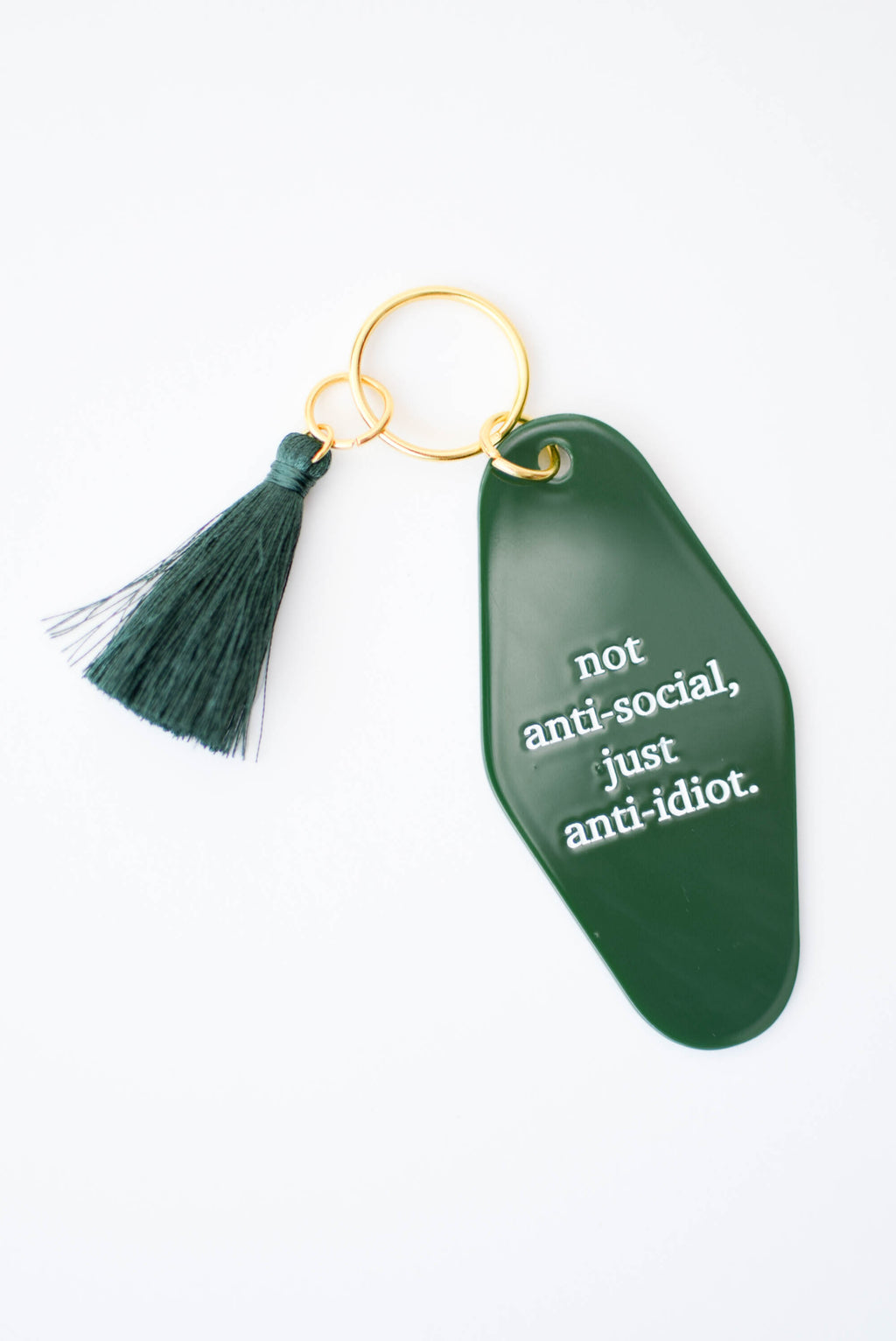 Anti-Idiot Keychain - Mint Pop Shop