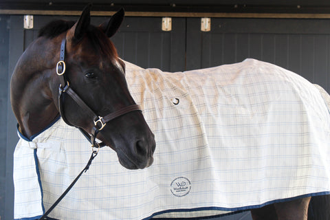 Tearlok® Breeze Deluxe Paddock Rug