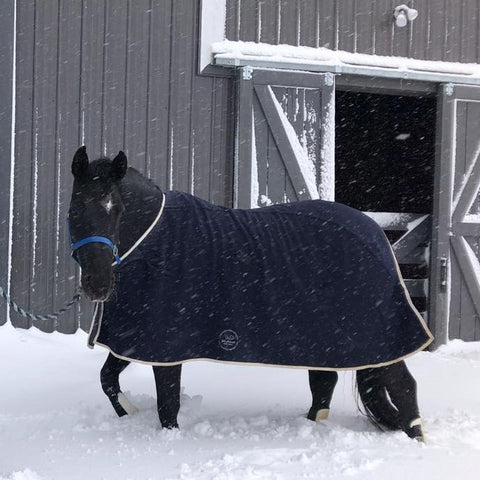 Deluxe Horse Rug - Wool (3 piece pattern)