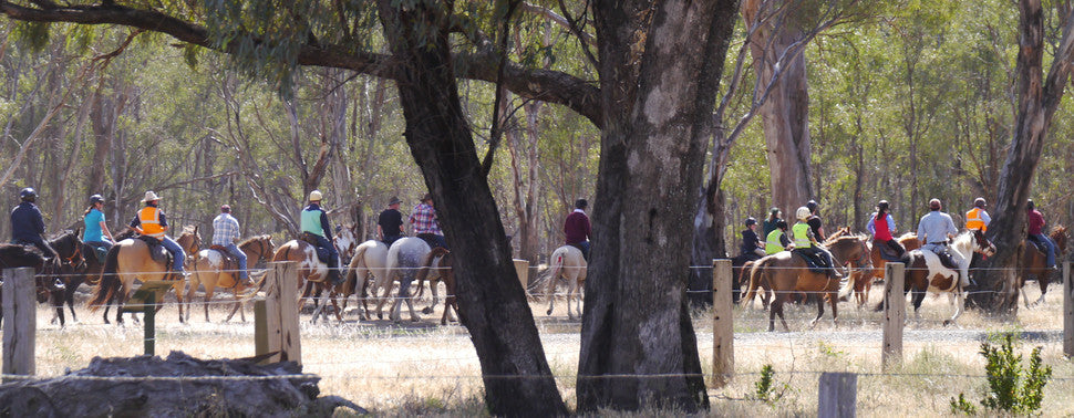 Riddells Creek Riding Club leaving Barham stockyards