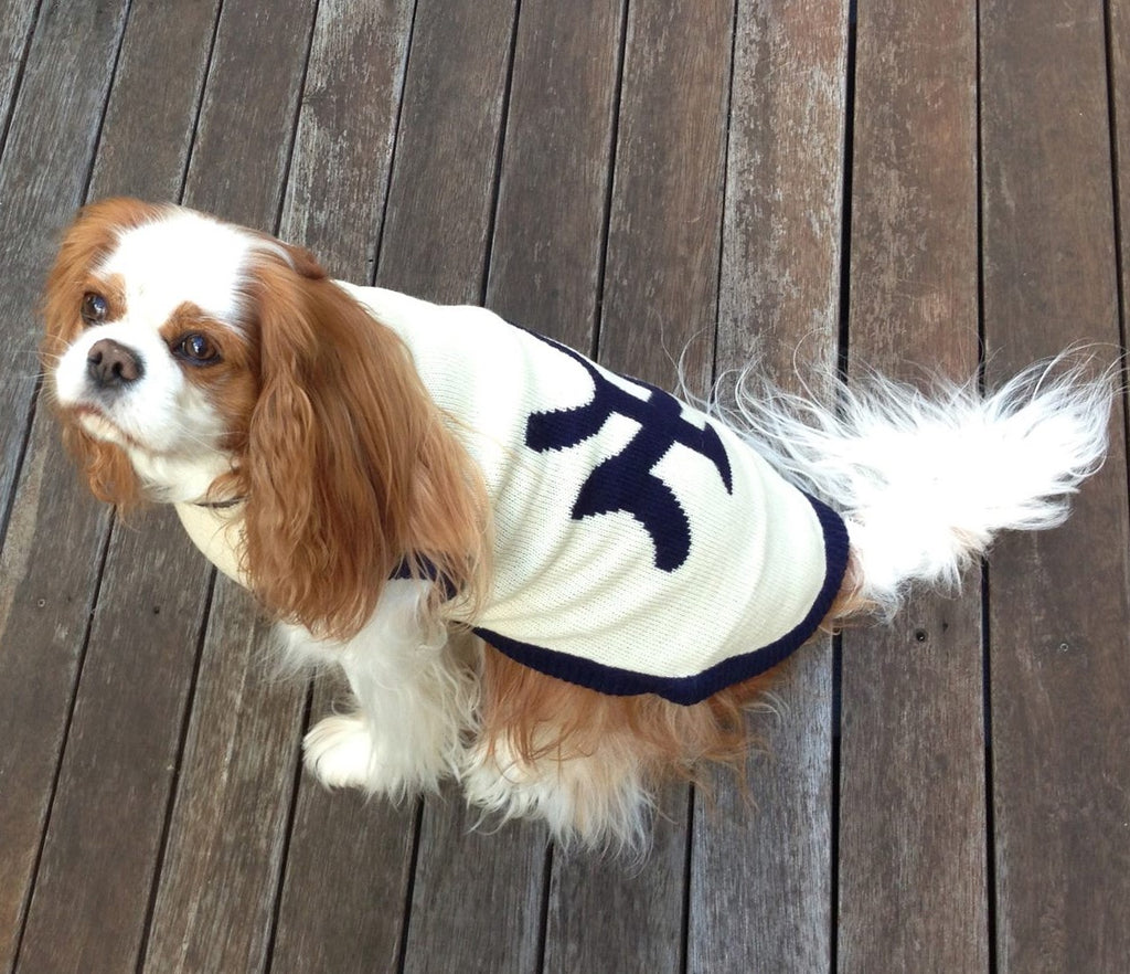 New York Dog Sweater - Cream/ Navy