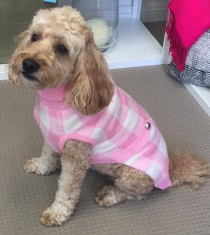 Boston Dog Sweater - Pink