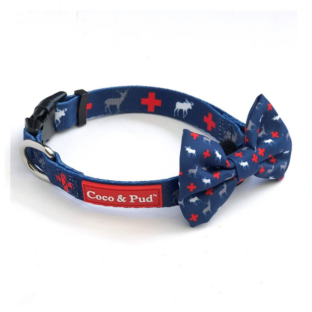 Coco & Pud Adventure Collar & Bow tie