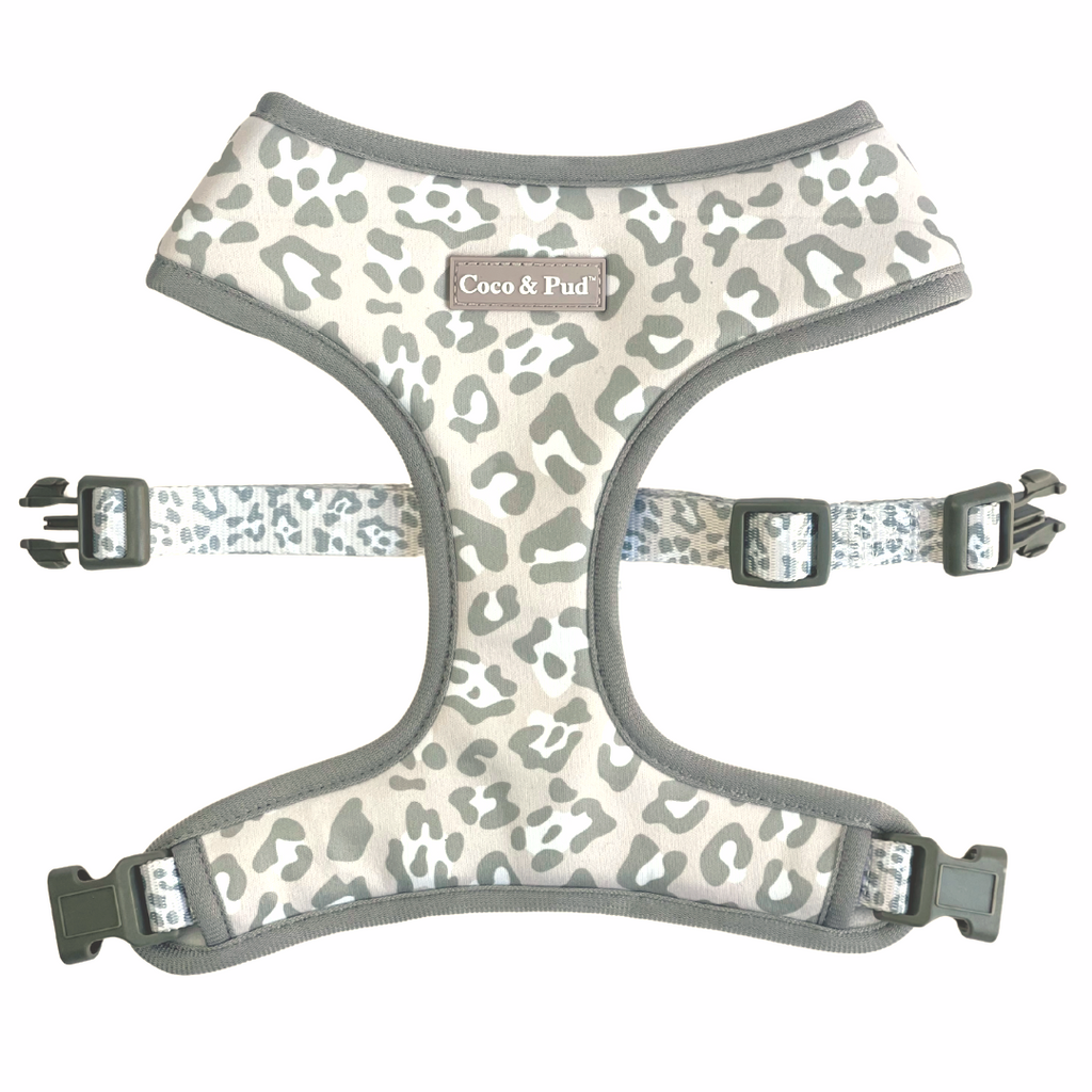 Coco & Pud Amur Leopard Reversible Dog Harness