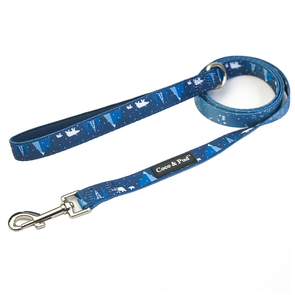 Arctic Pup Reversible Dog Leash/ Lead