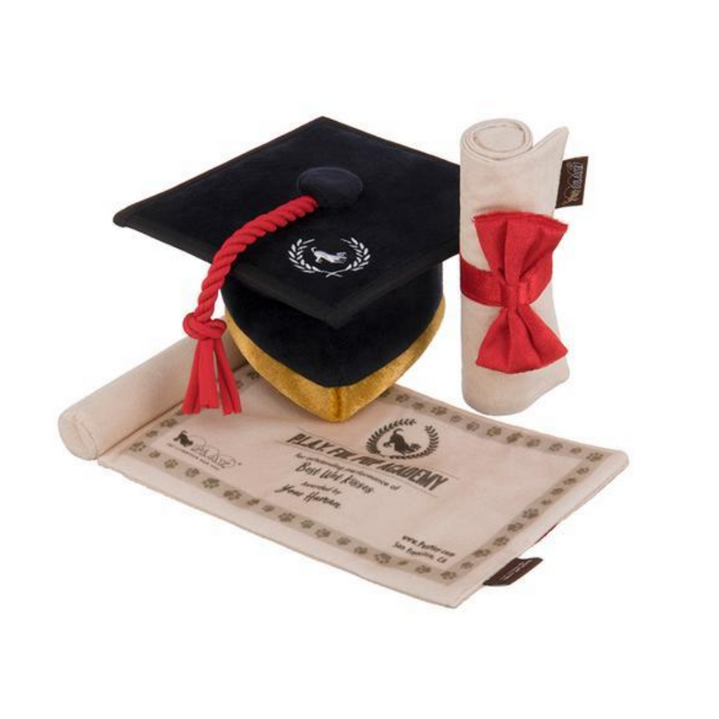 Coco & Pud - Back To School Graduation Cap Dog Toy