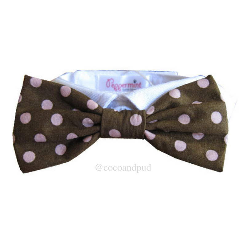 Polka Dot - Colin Bow Tie Collar