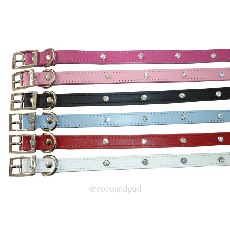 DOGUE Glam Rock Dog Collar