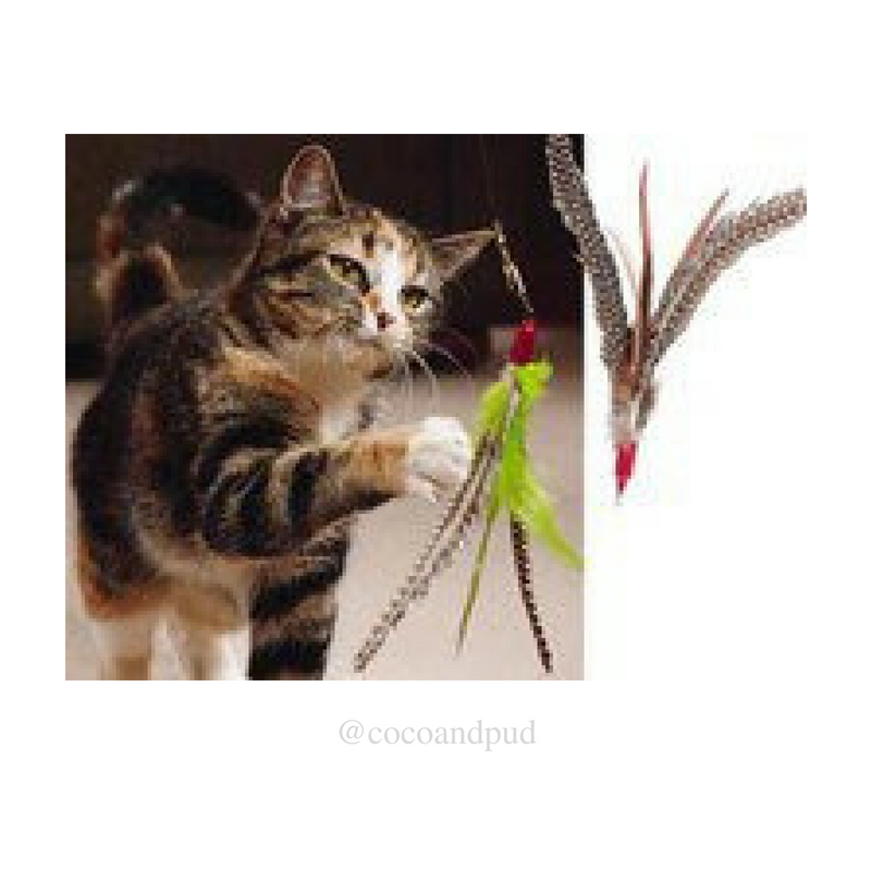 Da Bird Cat Toy Long Rod