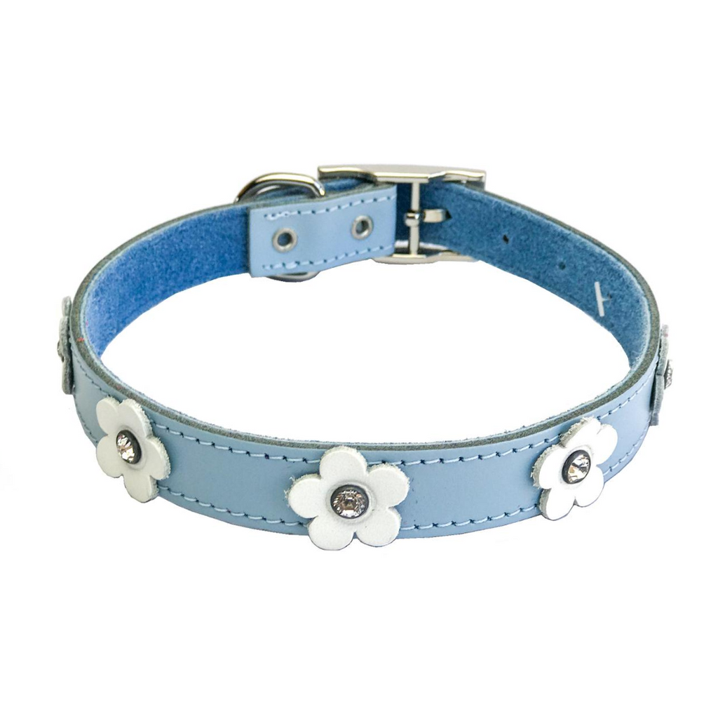 DOGUE Foxy Dog Collar - Blue