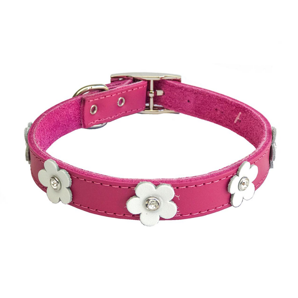 DOGUE Foxy Dog Collar - Fuschia