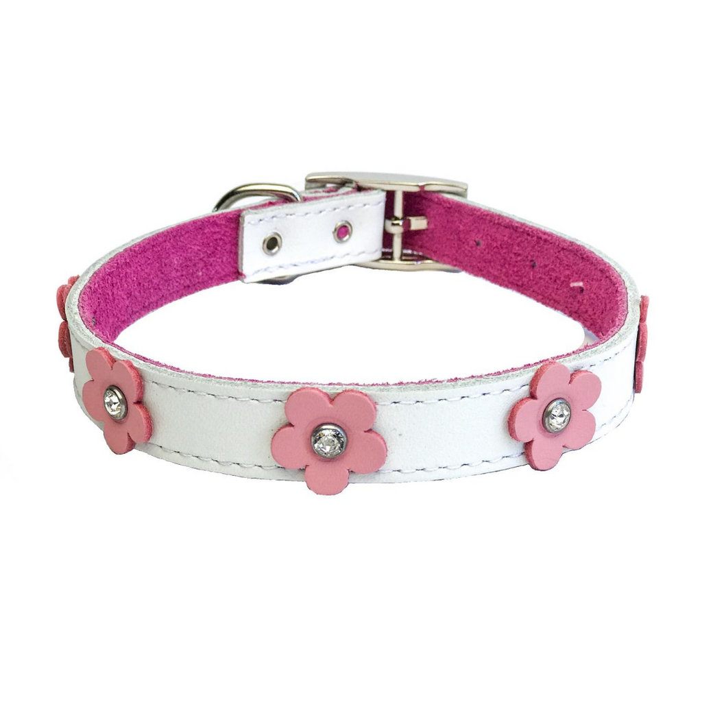 Coco & Pud - Dogue Foxy Dog Collar - White