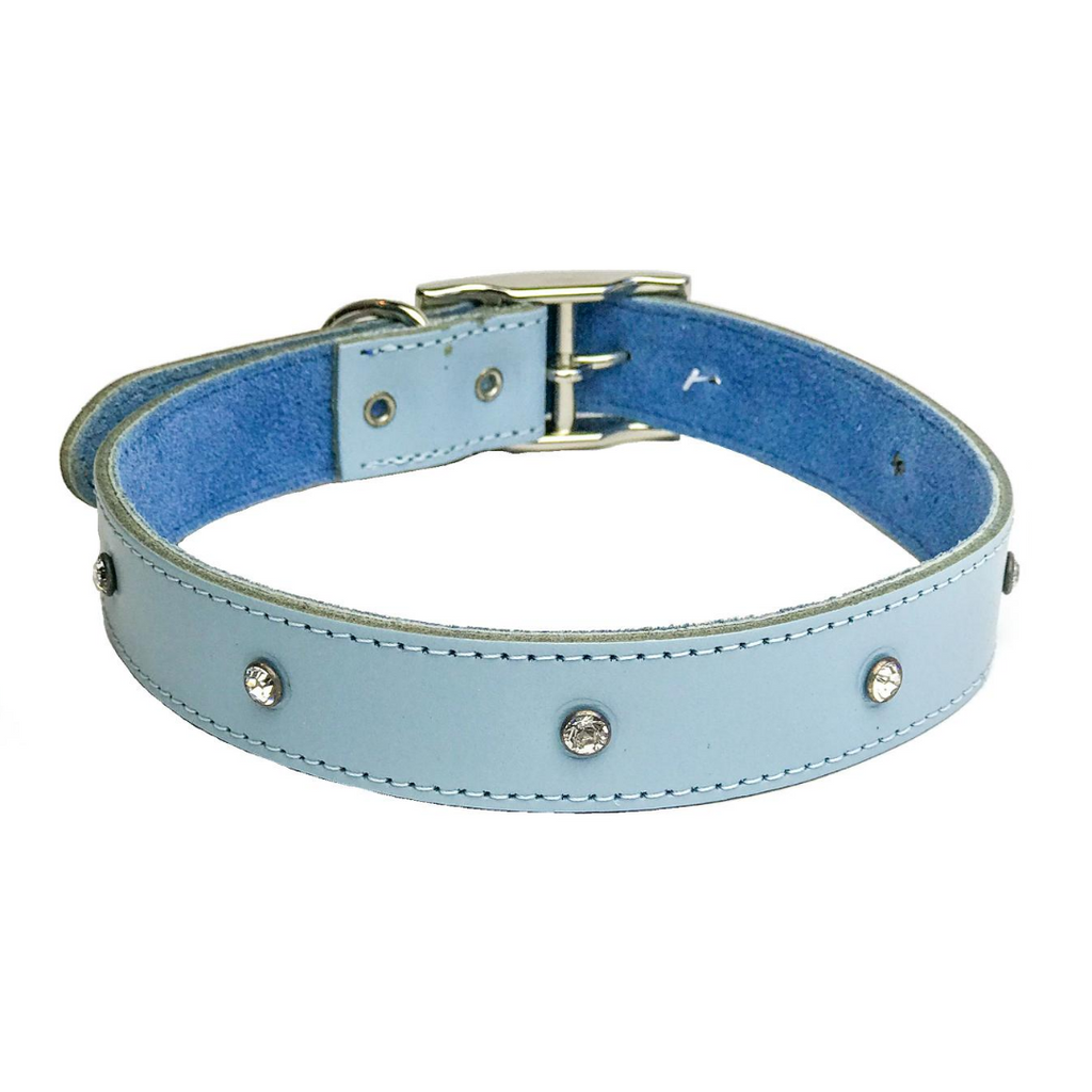 Dogue Glam Rock Dog Collar - Blue