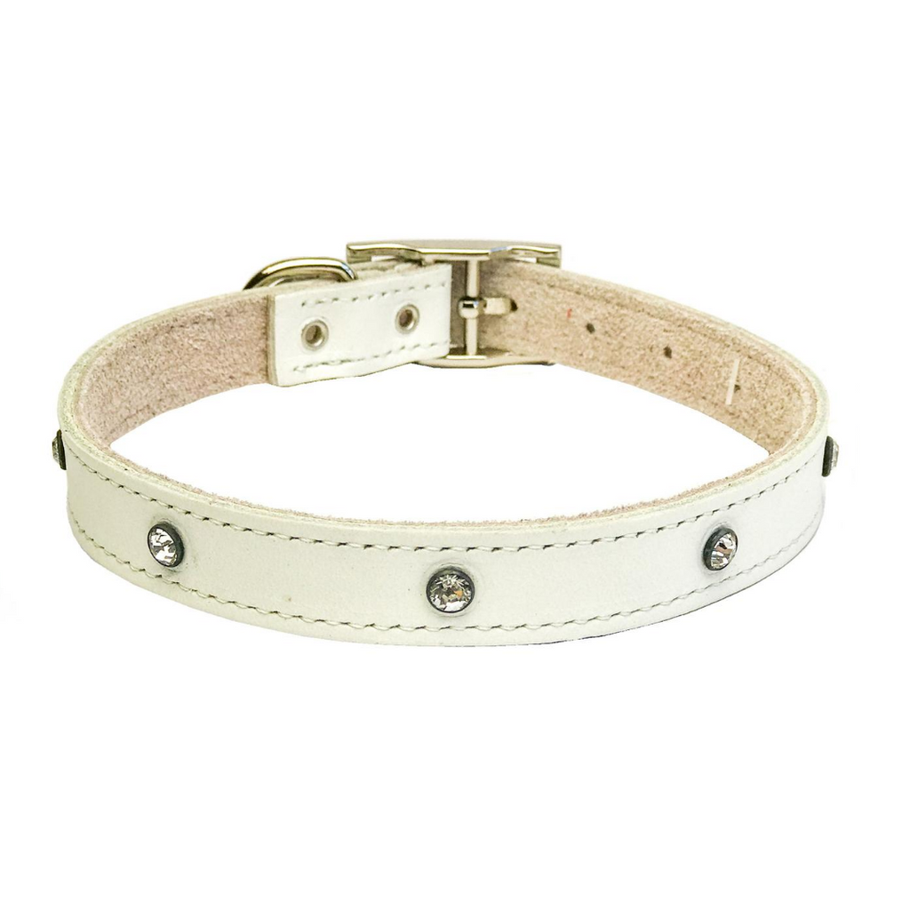 Dogue Glam Rock Dog Collar - White