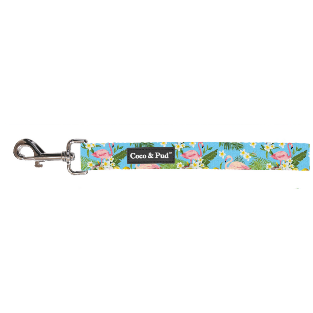 Coco & Pud Flamingo Tropical Cat Lead