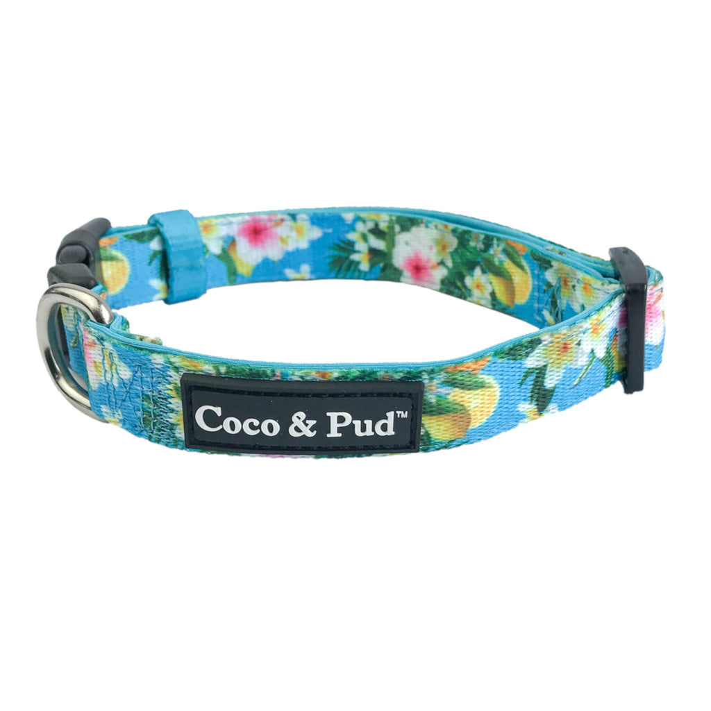 Coco & Pud Flamingo Tropical Dog Collar