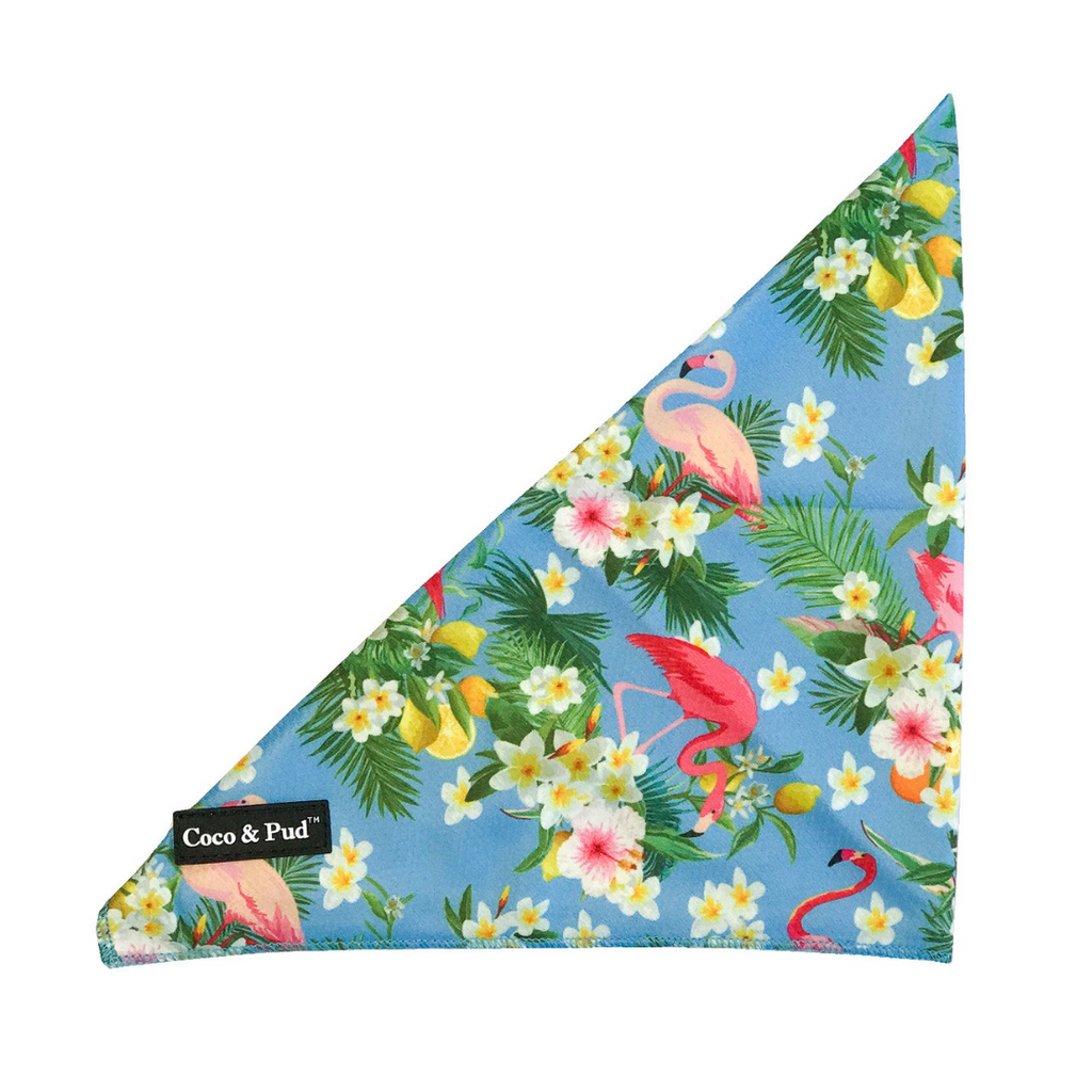 Coco & Pud Flamingo Tropical Bandana