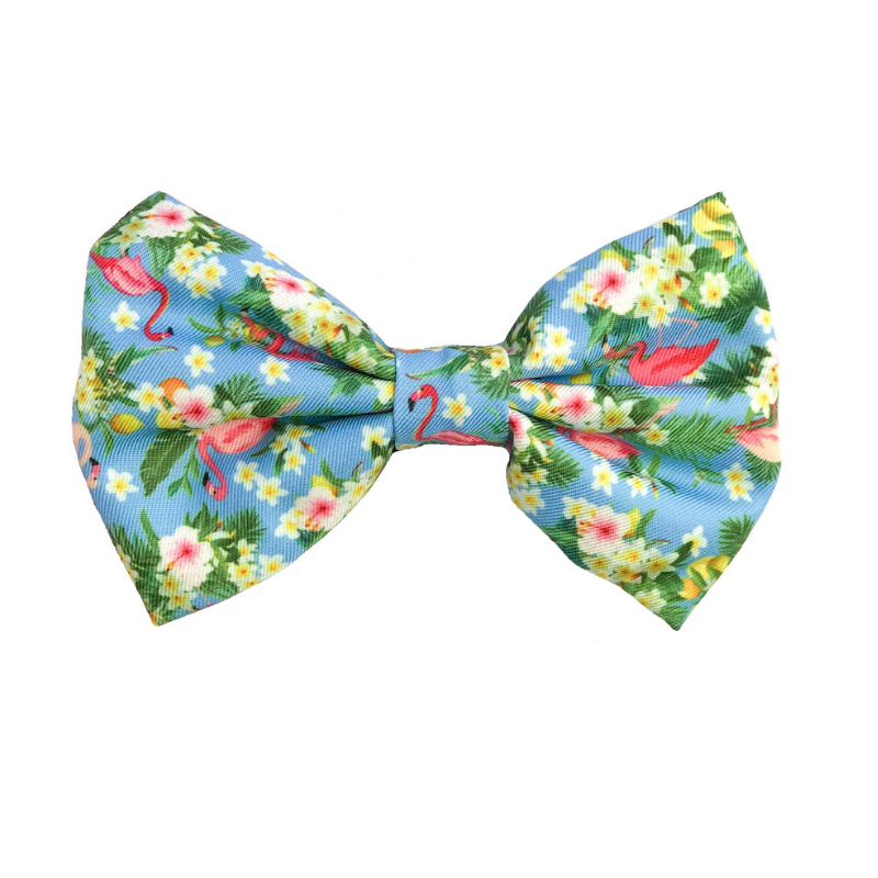 Coco & Pud Flamingo Tropical Bow tie