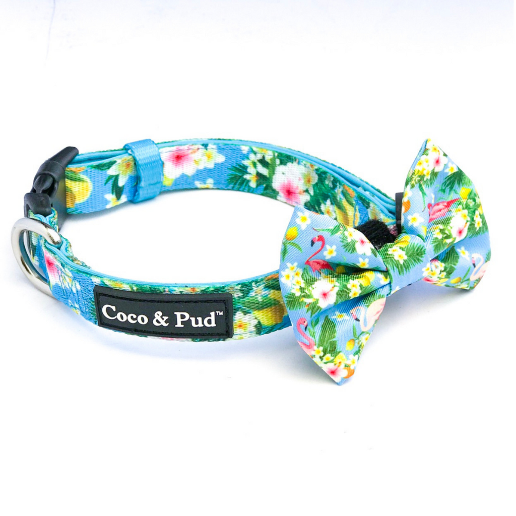 Coco & Pud Flamingo tropical Dog Collar & Bow tie