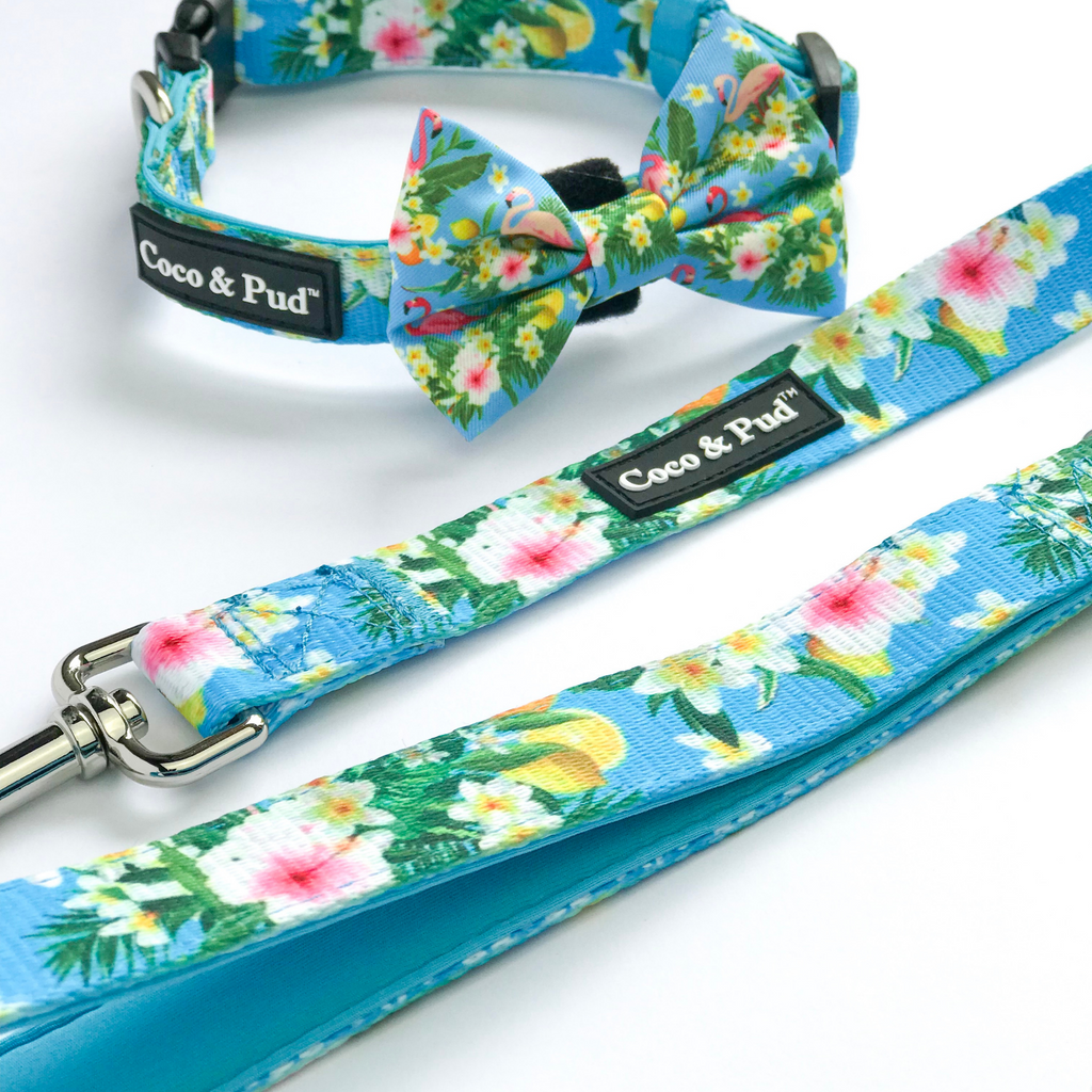 Coco & Pud Flamingo Tropical Dog Lead/ Leash
