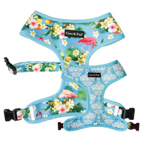Coco & Pud Flamingo Tropical Dog Harness
