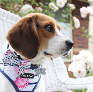 Coco & Pud Floral Blooms Dog Harness - Coco & Pud